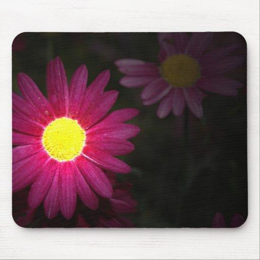Flor Mousepad do verão