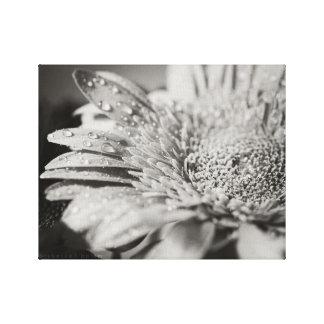 Flor preta & branca & impressão das canvas das