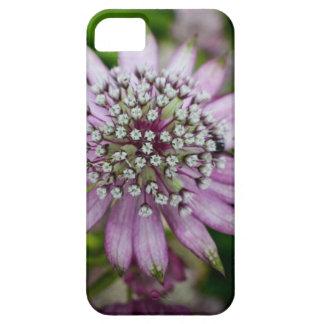 Flor roxa capas para iPhone 5