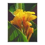 Flor tropica impressão de canvas envolvidas
