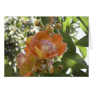 Flor tropical - cartão vazio