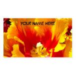 Flor vermelha amarela da tulipa dos cartões de vis