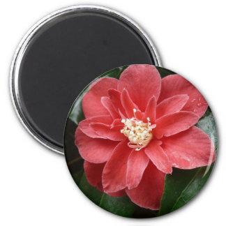 flor vermelha imã