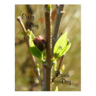 Flora Dia-Nativa da terra Cartão Postal