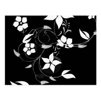 Floral branco no preto cartão postal