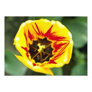 flores amarelas da tulipa convites