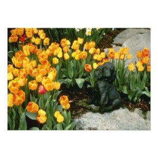 """""""flores amarelas do monarca alaranjado"""" do Tulipa  Convites Personalizados"""