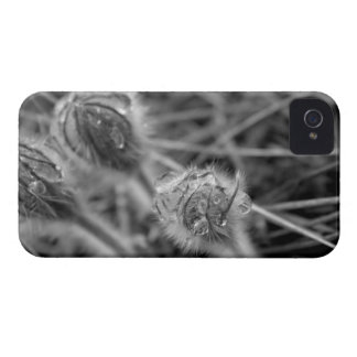 Flores antiquados capas para iPhone 4 Case-Mate