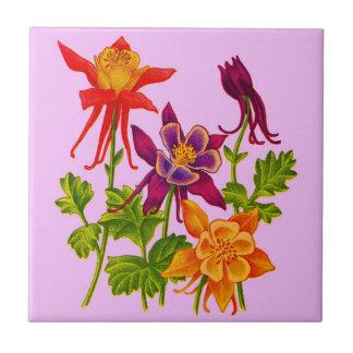 flores aquilégias