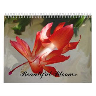 Flores bonitas do calendário