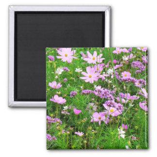 flores bonitas do jardim, 03 imãs
