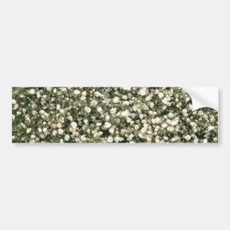 flores brancas de Gipsophila Adesivo