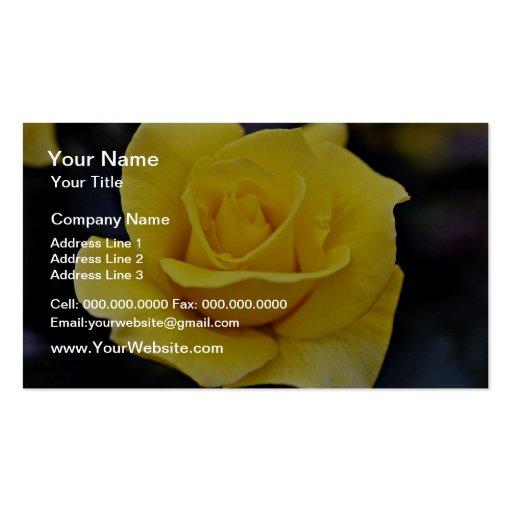 Flores brancas híbridas de rosa de chá modelo cartão de visita