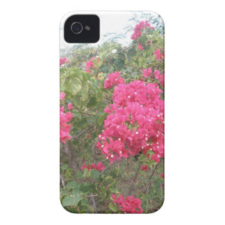 Flores Capa Para iPhone