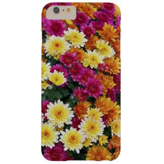 Flores coloridas do crisântemo X Morifolium Capas iPhone 6 Plus Barely There