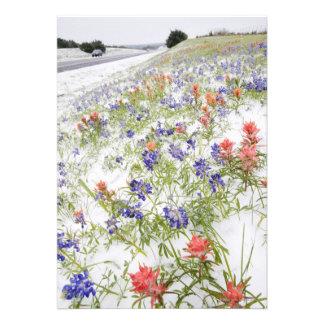 Flores congeladas convite