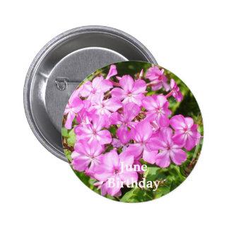 Flores cor-de-rosa brilhantes bóton redondo 5.08cm