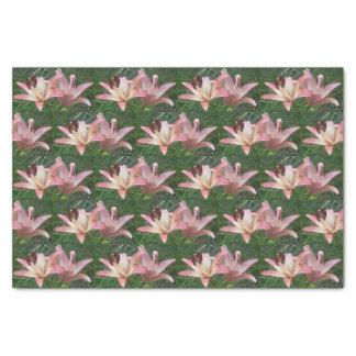 Flores cor-de-rosa do lenço de papel | da grama