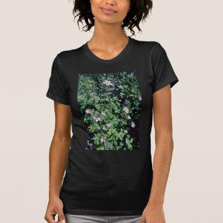 Flores cor-de-rosa do Mallow alto (Malva Sylvestri T-shirt