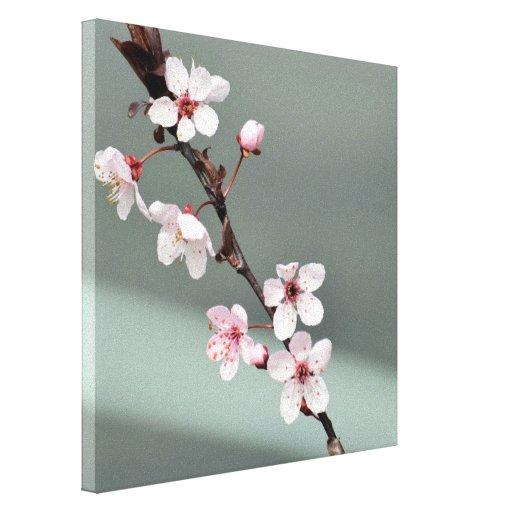 Flores cor-de-rosa do primavera impressão de canvas esticada