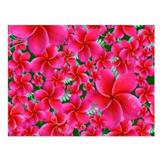 Flores cor-de-rosa e intensas, aniversário da cartão postal