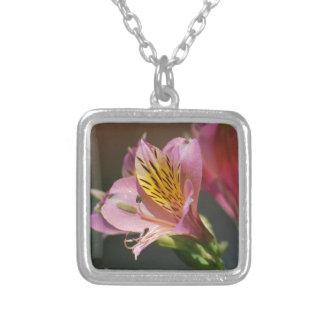 Flores cor-de-rosa e significado do lírio do Inca Colar Com Pendente Quadrado
