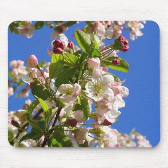 Flores da árvore de Apple selvagem Mousepad