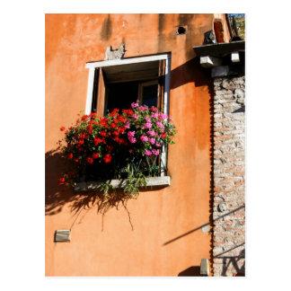 Flores da janela cartão postal