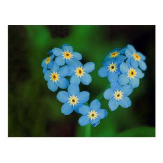 Flores dadas forma coração do miosótis cartão postal