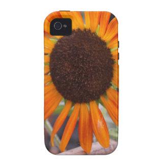 flores de 001 capa para iPhone 4/4S