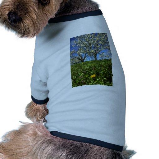 Flores de Apple, Hood River, Oregon Camisas Para Caes
