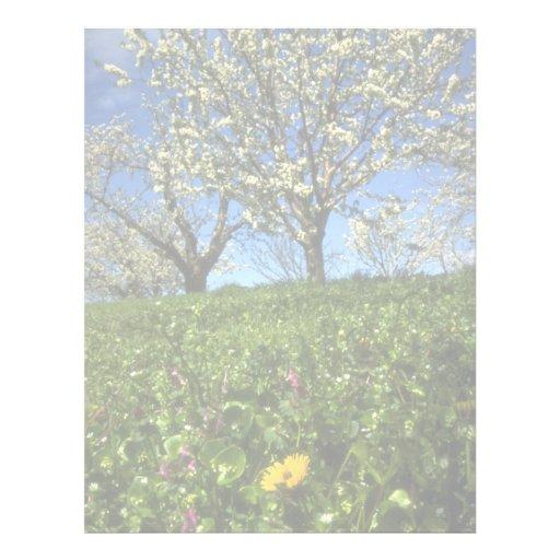 Flores de Apple, Hood River, Oregon Modelos De Papel De Carta