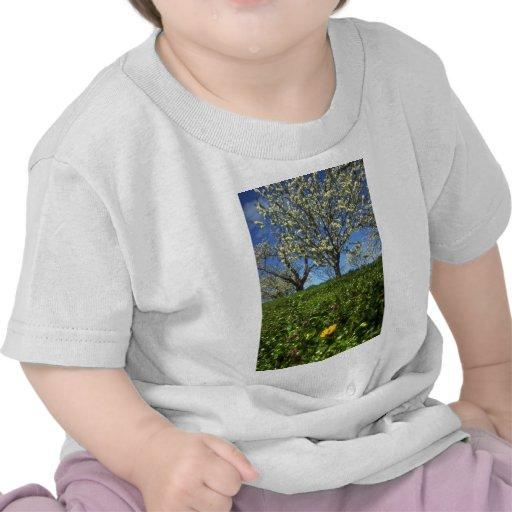 Flores de Apple, Hood River, Oregon Tshirt