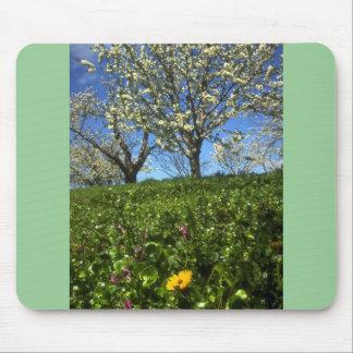 Flores de Apple, Hood River, Oregon Mouse Pads