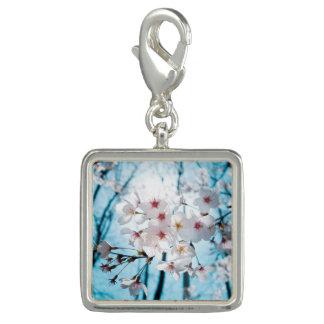 Flores de cerejeira de Ásia Photo Charms