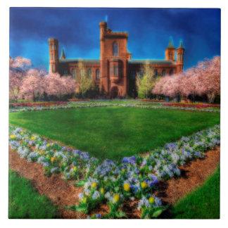Flores de cerejeira do jardim do castelo de