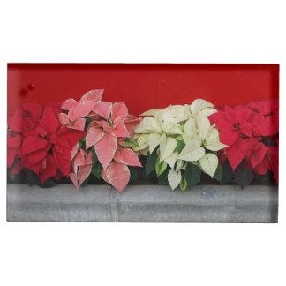 Flores de Pointsettia do Natal Suportes Para Cartao De Mesa
