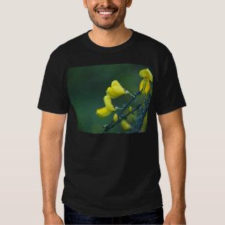 Flores de um arbusto alemão do Greenweed, alemão Tshirts