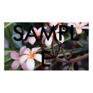 Flores do Frangipani, AMOSTRA Cartão De Visita
