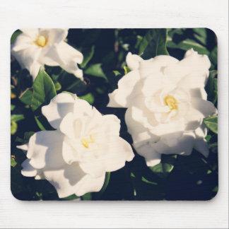 Flores do Gardenia Mouse Pad