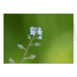 Flores do miosótis cartão comemorativo