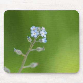 Flores do miosótis mouse pad
