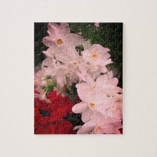 Flores do Natal que relaxam o quebra-cabeça de