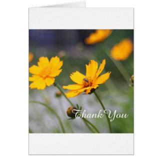 Flores do primavera, obrigado cartão com fotos de