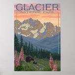 Flores do primavera - parque nacional de geleira,  poster