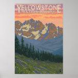 Flores do primavera - parque nacional de Yellowsto Posteres