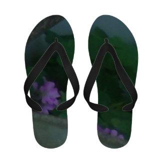 Flores do trevo do trevo sob o patamar sandalia de dedo