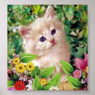Posters de Gatos