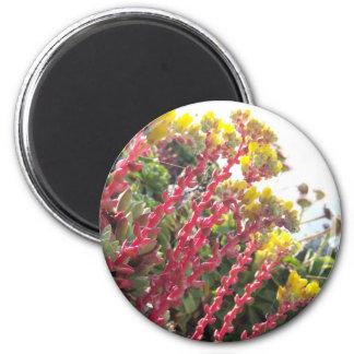 Flores Ímã Redondo 5.08cm