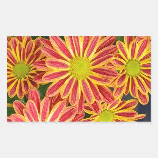 Flores listradas vermelhas e amarelas do adesivos retangulares